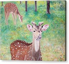 Acrylic Print featuring the painting Deer In Woods by Elizabeth Lock