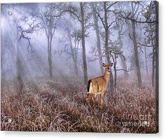 Deer Me Acrylic Print