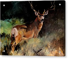 Deer Painting Acrylic Print by Michele Carter