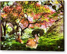 Deer Relaxing In A Meadow Acrylic Print
