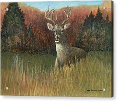 Deer Season Acrylic Print by Robert Harrington