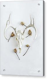 Acrylic Print featuring the photograph Deer Skull With Antlers And Roses by Stephanie Frey
