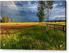 Acrylic Print featuring the photograph Deer Under The Rainbow by Cat Connor