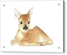 Deer Watercolor Acrylic Print by Taylan Apukovska