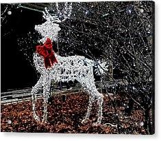 Deer Winter Acrylic Print