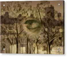 Deforestation Acrylic Print by Santanu Karmakar