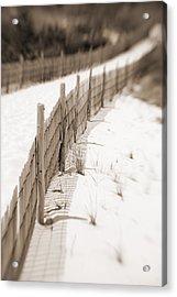 Delaware Dunes Number Fourteen Acrylic Print