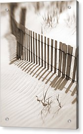 Delaware Dunes Number Six Acrylic Print