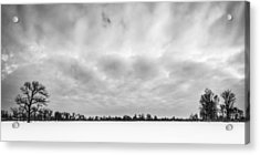 Delaware Park Winter  Meadow Acrylic Print by Chris Bordeleau