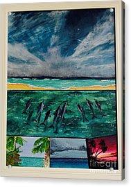 Delfin Acrylic Print