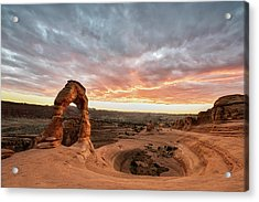 Delicate At Sunset Acrylic Print