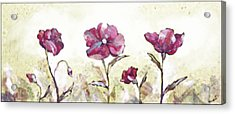 Delicate Poppy II Acrylic Print