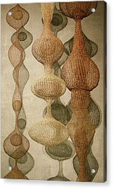 Acrylic Print featuring the photograph Delicate Shapes by Roger Mullenhour