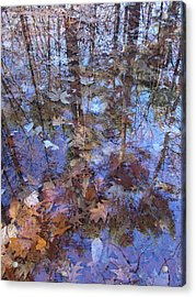 Delight In A Woodland Run-off Acrylic Print