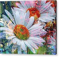 Delightful Daisies Acrylic Print