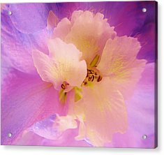Delphinium Abstract Acrylic Print
