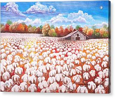 Delta Cotton Field With Webb's Barn Acrylic Print by Cecilia Putter