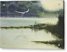 Delta Mist Acrylic Print