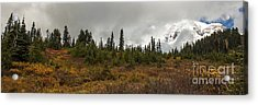 Mt. Rainier - Head In The Clouds Acrylic Print by Chuck Flewelling