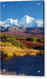 Denali Autumn Acrylic Print by Ed Boudreau