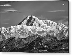 Denali Grey Acrylic Print