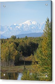 Denali In The Distance Acrylic Print