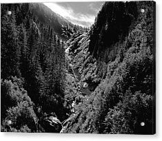 Denali National Park 3 Acrylic Print