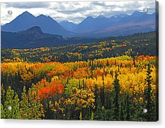 Denali National Park Greeting Acrylic Print