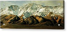 Denali Road 8 Acrylic Print by Marty Koch