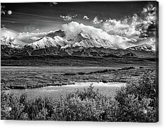 Denali, The High One In Black And White Acrylic Print