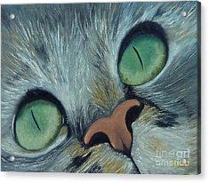 Denise's Cat Jasmine Acrylic Print