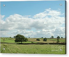 Derbyshire Landscape Acrylic Print by Mini Arora