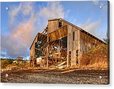 Derelict Boatshed Acrylic Print by Darryl Luscombe