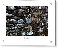 Acrylic Print featuring the digital art Derelict by Julian Perry
