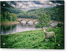 Derwent Reservoir Acrylic Print