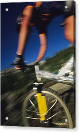 Descending A Mountain Trail Into Yankee Acrylic Print by Bill Hatcher