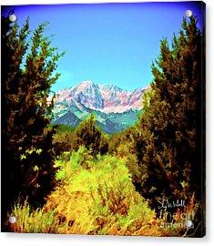Deseret Peak Acrylic Print