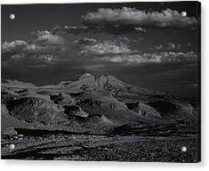Desert Acrylic Print by Amarildo Correa