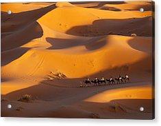 Desert And Caravan Acrylic Print