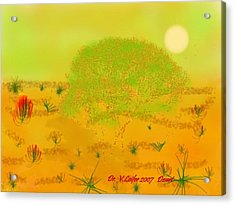 Desert Acrylic Print by Dr Loifer Vladimir
