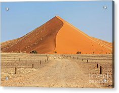 Desert Dune Acrylic Print
