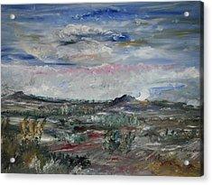 Desert Acrylic Print by Edward Wolverton