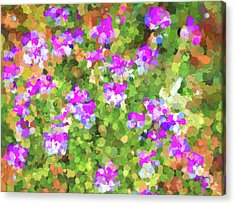 Desert Flowers In Abstract Acrylic Print by Penny Lisowski