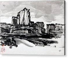 Desert Acrylic Print