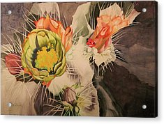 Desert Grace Acrylic Print by Teresa Beyer