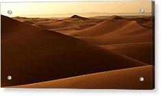 Desert Impression Acrylic Print by Ralph A  Ledergerber-Photography