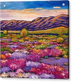 Desert In Bloom Acrylic Print by Johnathan Harris