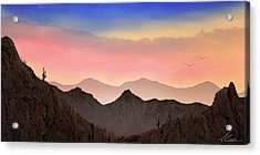 Acrylic Print featuring the photograph Desert Landscape by Anthony Citro