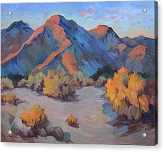 Acrylic Print featuring the painting Desert Light by Diane McClary