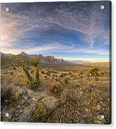 Desert Light Acrylic Print